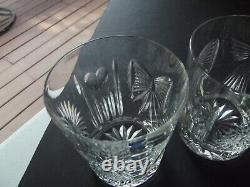 2 Double Old Fashioned Tumbler Glass 4-3/8 Waterford Crystal Millennium 5 Toast